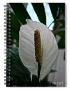 Candle White Spiral Notebook
