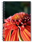 Candy Corn Cone Flower Spiral Notebook