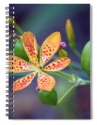 Candy Lily Spiral Notebook