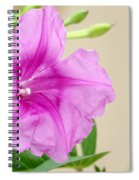 Candy Pink Morning Glory Flower Spiral Notebook
