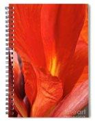 Canna Closeup Spiral Notebook