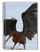 Canopy Hunting Spiral Notebook