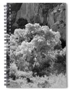 Canyon Treasure Spiral Notebook