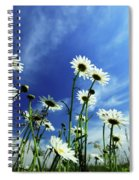 Cape Cod Summer Spiral Notebook