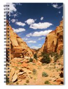 Capitol Reef Cohab Canyon Spiral Notebook