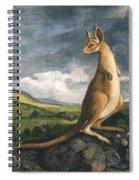 Captain Cook: Kangaroo, 1773 Spiral Notebook
