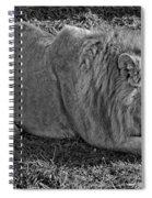 Captain Crunch Monochrome Spiral Notebook