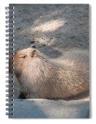 Capybara Spiral Notebook