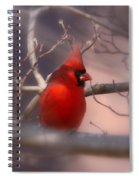 Cardinal - Unafraid Spiral Notebook