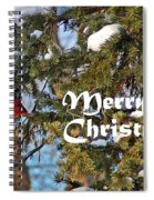 Cardinal Christmas Card Spiral Notebook