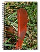 Cardinal Feather Spiral Notebook