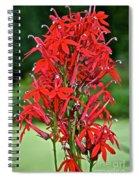 Cardinal Flower Full Bloom Spiral Notebook