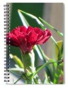 Carnation Named Hounsa Spiral Notebook