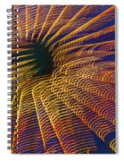 Carnival Abstract Lights Spiral Notebook