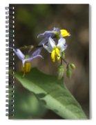 Carolina Horse Nettle - Bull Nettle - Devil's Tomato - Solanum Carolinense Spiral Notebook