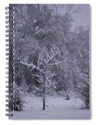 Carolina Snowfall Spiral Notebook