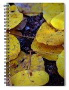 Carpet Of Gold Spiral Notebook
