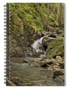 Cascades Happy Trail 9128 Spiral Notebook