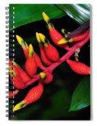Cascading Color Spiral Notebook