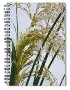 Cascading Pampas Spiral Notebook