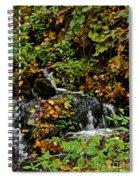 Casual Creek Spiral Notebook