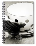 Cat And Mouse Coffee Spiral Notebook