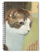 Cat And Sunset Spiral Notebook