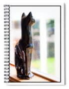 Cat At The Window Spiral Notebook