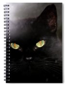 Cat Behind A Rain Spattered Window Spiral Notebook