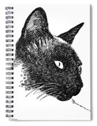Cat Drawings 5 Spiral Notebook