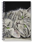 Cat Friends Spiral Notebook