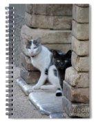 Cat Guardians Spiral Notebook