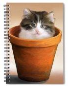 Cat In A Pot Spiral Notebook