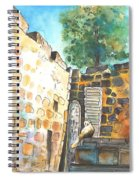 Cat In Nicosia Spiral Notebook