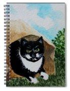 Cat In The Bag Spiral Notebook