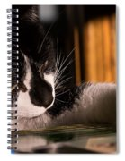 Cat Playing A Game Spiral Notebook