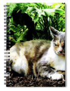 Cat Relaxing In Garden Spiral Notebook