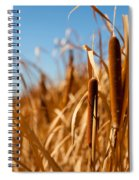 Cat Tails Spiral Notebook
