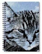 Catawampus Spiral Notebook
