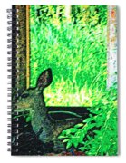 Catching Some Shade Spiral Notebook