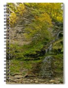 Cathedral Falls West Virginia Spiral Notebook