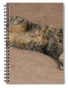 Catnip Spiral Notebook