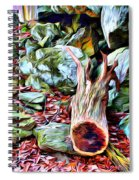 Catoctin Cliff Trail Spiral Notebook
