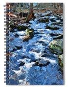 Catoctin Stream Spiral Notebook