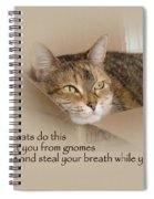Cats Protecting You From Gnomes - Lily The Cat Spiral Notebook