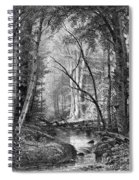 Catskill Brook, 1873 Spiral Notebook