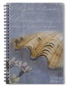 Catspaw Seashell Spiral Notebook
