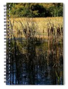 Cattail Duck Cover Spiral Notebook