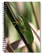 Cattail Kid Spiral Notebook