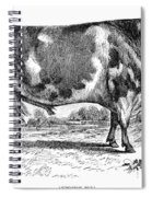 Cattle, 1867 Spiral Notebook